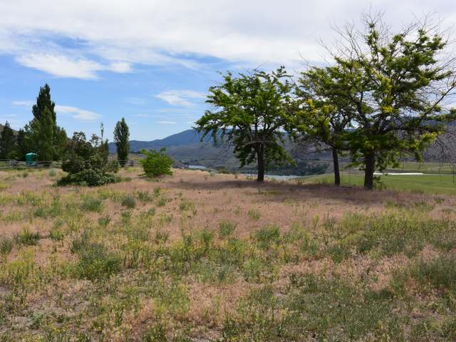 Photo 28: Photos: 1353 BALE ROAD in : Cherry Creek/Savona House for sale (Kamloops)  : MLS® # 131180