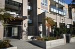 "Main Photo: 213 85 EIGHTH Avenue in New Westminster: GlenBrooke North Condo for sale in ""EIGHTWEST"" : MLS® # R2244838"