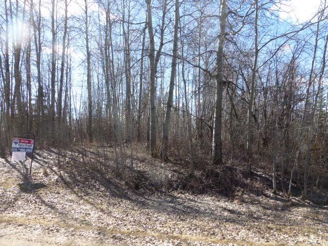 Main Photo: 125 Sunset Boulevard: Rural Leduc County Rural Land/Vacant Lot for sale : MLS® # E4059574