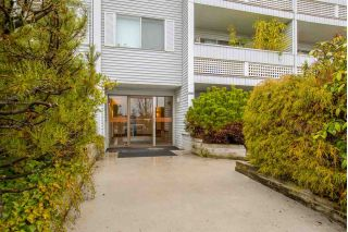"Main Photo: 201 2055 SUFFOLK Avenue in Port Coquitlam: Glenwood PQ Condo for sale in ""SUFFOLK MANOR"" : MLS® # R2239452"