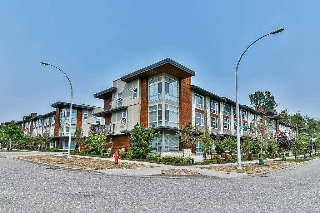 "Main Photo: 150 2228 162 Street in Surrey: Grandview Surrey Townhouse for sale in ""BREEZE"" (South Surrey White Rock)  : MLS® # R2196557"