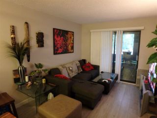 Main Photo: 205 1948 COQUITLAM Avenue in Port Coquitlam: Glenwood PQ Condo for sale : MLS®# R2261253