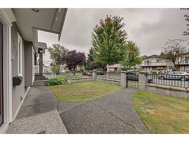 Photo 13: 3667 E 26TH Avenue in Vancouver: Renfrew Heights House for sale (Vancouver East)  : MLS(r) # V1085524