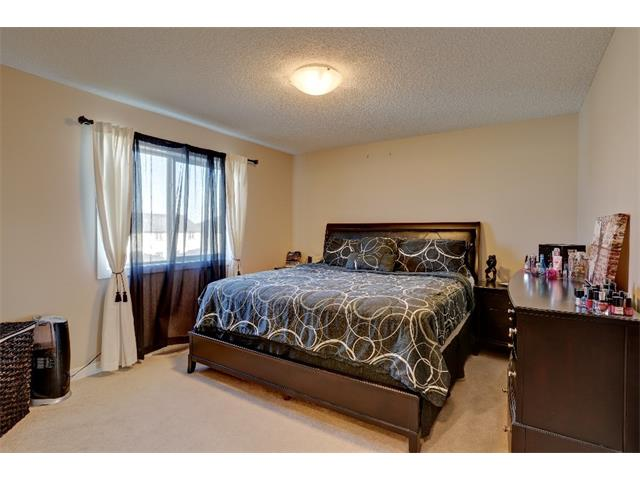 Photo 11: 22 SKYVIEW POINT Link NE in Calgary: Skyview Ranch House for sale : MLS® # C4019553