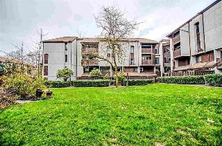 "Main Photo: 9 340 GINGER Drive in New Westminster: Fraserview NW Townhouse for sale in ""FRASER MEWS"" : MLS® # R2198212"