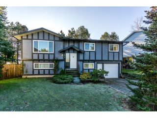 Main Photo: 2876 267A Street in Langley: Aldergrove Langley House for sale : MLS® # R2226858