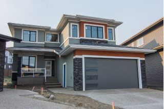 Main Photo:  in Edmonton: Zone 56 House for sale : MLS®# E4125028