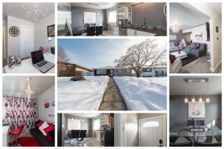 Main Photo: 9535 133 Avenue NW in Edmonton: Zone 02 House for sale : MLS®# E4102547