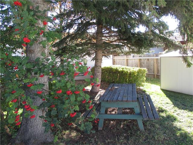 Photo 7: 5707 LAWSON Place SW in Calgary: Lakeview House for sale : MLS® # C4034051
