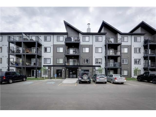 Main Photo: 425 504 ALBANY Way in Edmonton: Zone 27 Condo for sale : MLS(r) # E4038359