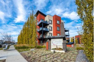 Main Photo: 204 304 AMBLESIDE Link in Edmonton: Zone 56 Condo for sale : MLS®# E4133272