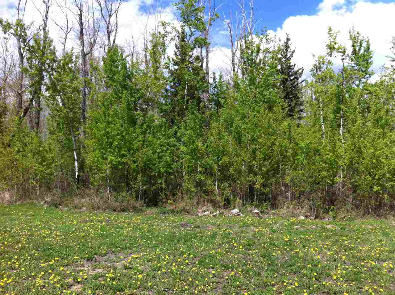 Photo 2: 4718 39 Avenue: Gibbons Vacant Lot for sale : MLS(r) # E4063132