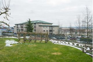 "Main Photo: 212 6336 197 Street in Langley: Willoughby Heights Condo for sale in ""Rockport"" : MLS® # R2248203"