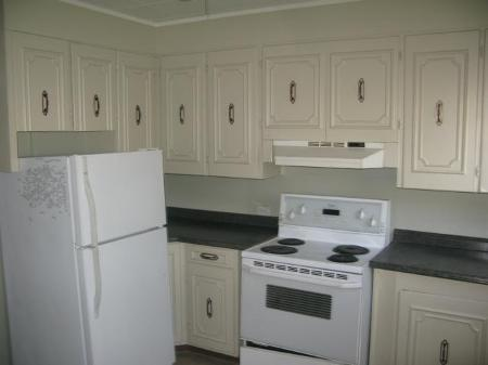 Photo 4: Photos: 260 MARTIN Avenue West in Winnipeg: Residential for sale (Elmwood)  : MLS® # 1119108