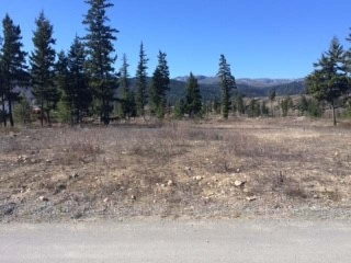 Main Photo: 589 MCLEAN ROAD in : Barriere Lots/Acreage for sale (North East)  : MLS® # 131670