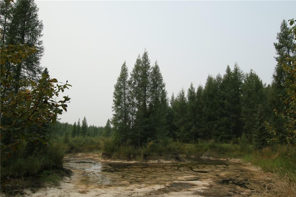 Photo 45: 345040 RR 5-1: Rural Clearwater County House for sale : MLS® # C4133264