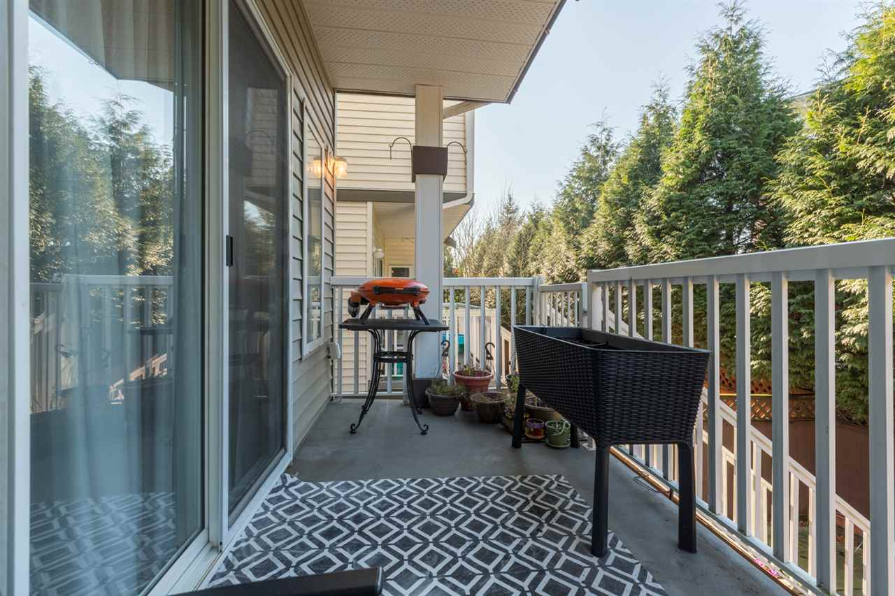 Photo 14: Photos: 6651 205TH Street in Langley: Willoughby Heights House for sale : MLS® # R2226754