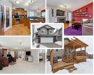 Main Photo: 16704 113 Street in Edmonton: Zone 27 House for sale : MLS® # E4099179