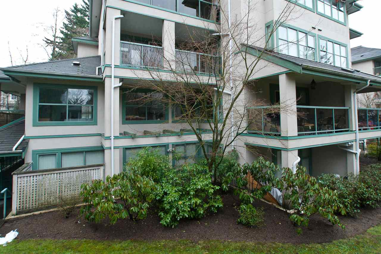 Photo 19: 202B 7025 STRIDE AVENUE in Burnaby: Edmonds BE Condo for sale (Burnaby East)  : MLS® # R2056224