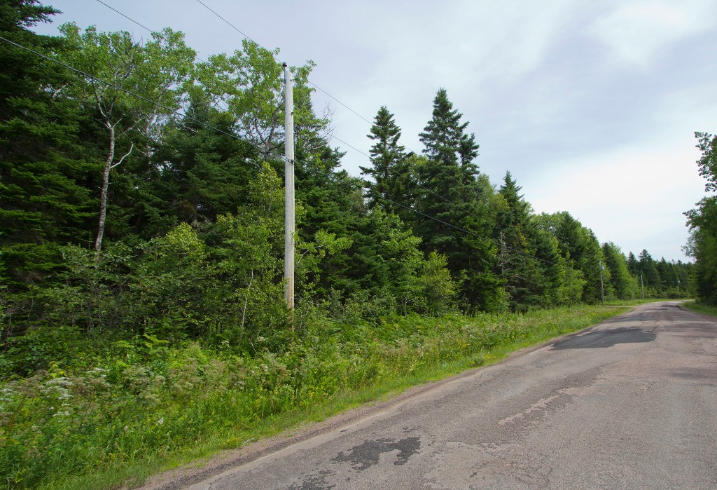Photo 2: Lot Green Road: Westcock Vacant Land for sale (Sackville)  : MLS® # M106566