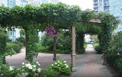 Photo 6: 300 Manitoba St Unit #403 in Toronto: Mimico Condo for sale (Toronto W06)  : MLS(r) # W3453080