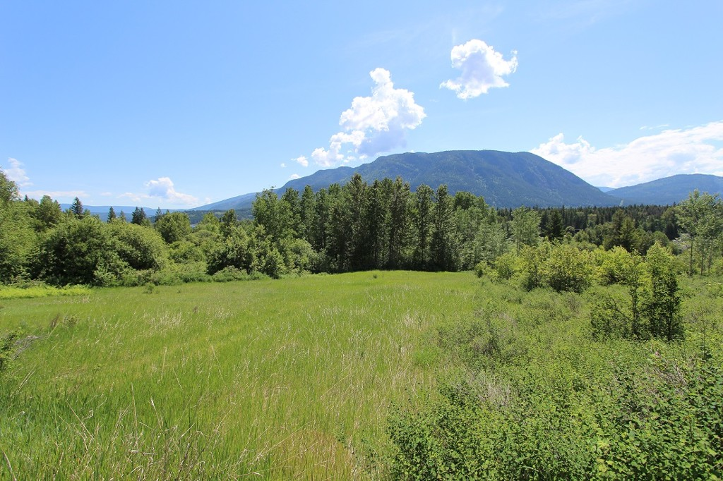 Main Photo: 37 2481 Squilax Anglemont Road in Lee Creek: North Shuswap Land Only for sale (Shuswap)  : MLS® # 10094382