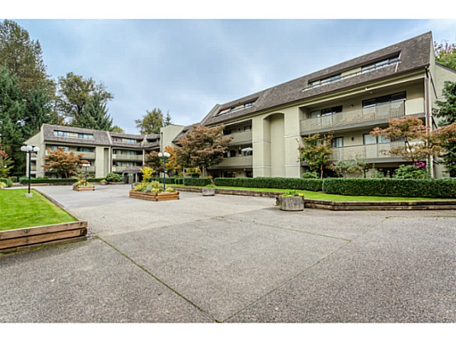 Main Photo: 412 1210 PACIFIC STREET in Coquitlam: North Coquitlam Condo  : MLS®# V1088926