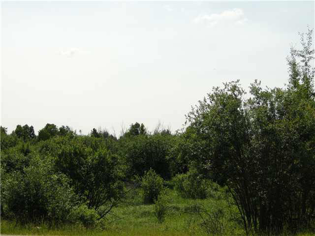 Main Photo: Range Road 42 & Twp. Road 534: Rural Parkland County Rural Land/Vacant Lot for sale : MLS® # E3387341