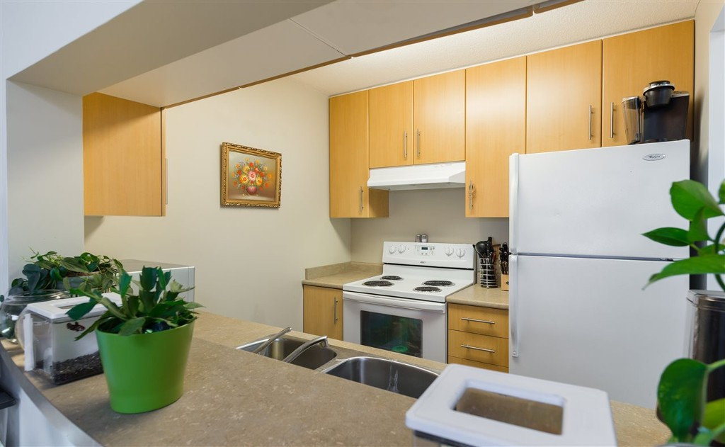 Photo 3: 1210 3660 Vanness Avenue in Vancouver: Collingwood VE Condo for sale (Vancouver East)  : MLS® # R2125808