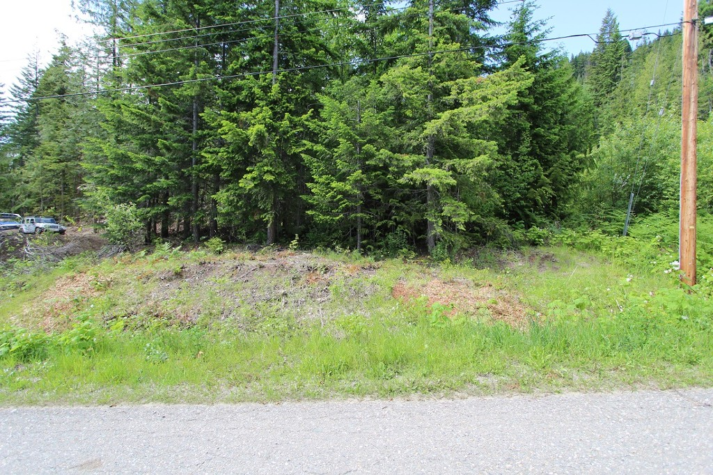 Main Photo: Lot 367 Fairview Road in Anglemont: North Shuswap, Anglemont Land Only for sale (Shuswap)  : MLS(r) # 10133376