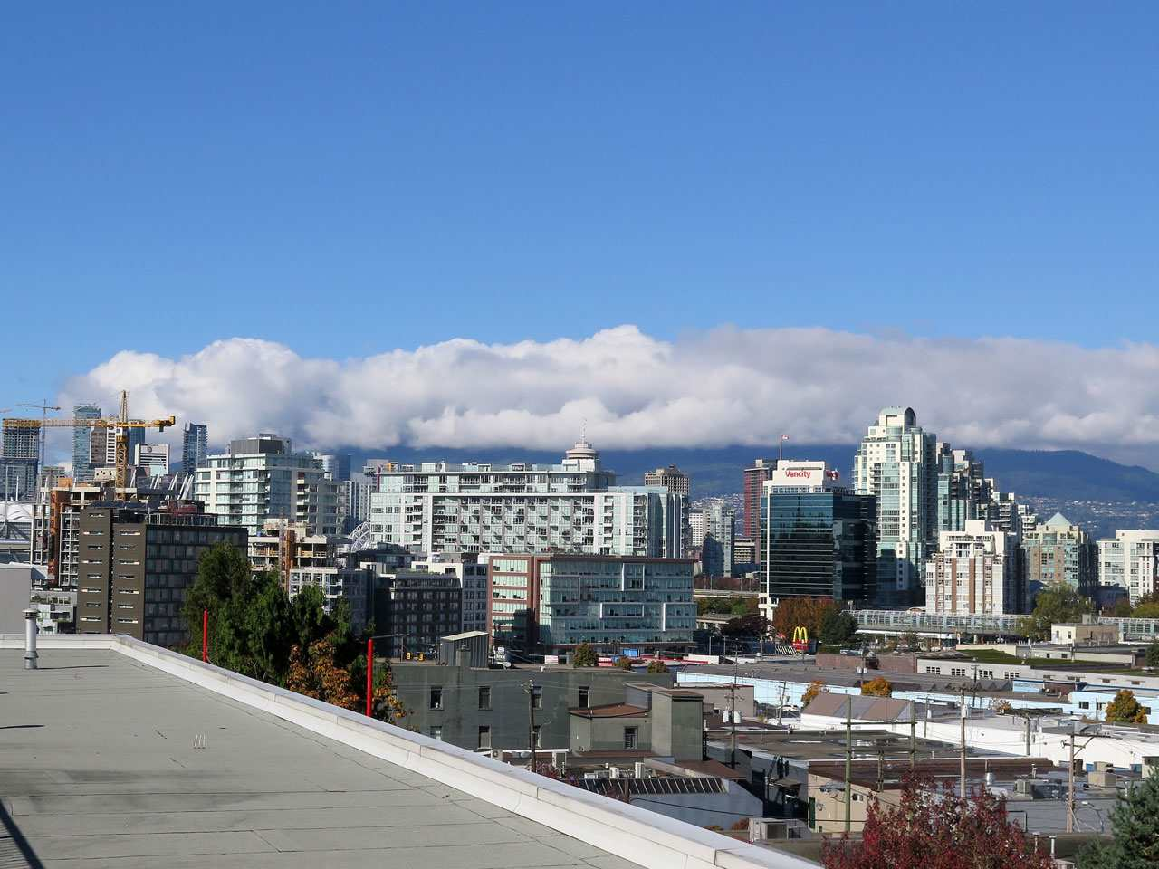 Photo 3: 214 350 E 2ND AVENUE in Vancouver: Mount Pleasant VE Condo for sale (Vancouver East)  : MLS(r) # R2014150
