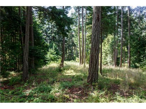 Photo 7: 2260 Tryon Road in NORTH SAANICH: NS Curteis Point Land for sale (North Saanich)  : MLS(r) # 339795