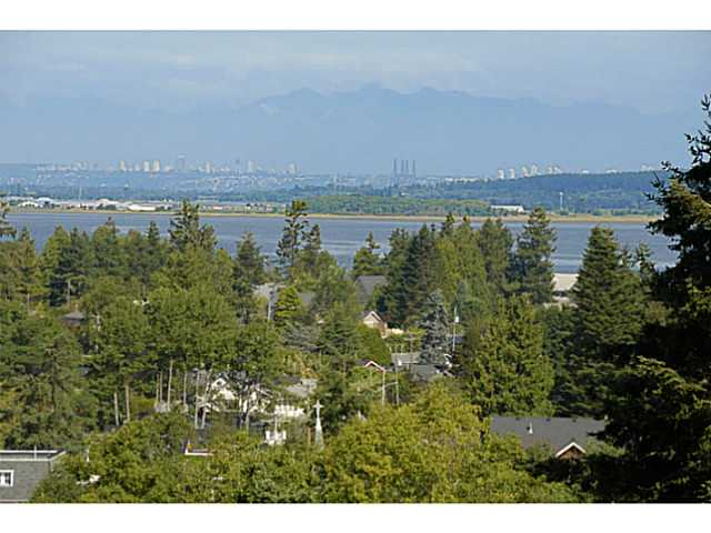 Photo 16: 2641 CRESCENT DR in Surrey: Crescent Bch Ocean Pk. House for sale (South Surrey White Rock)  : MLS® # F1408380