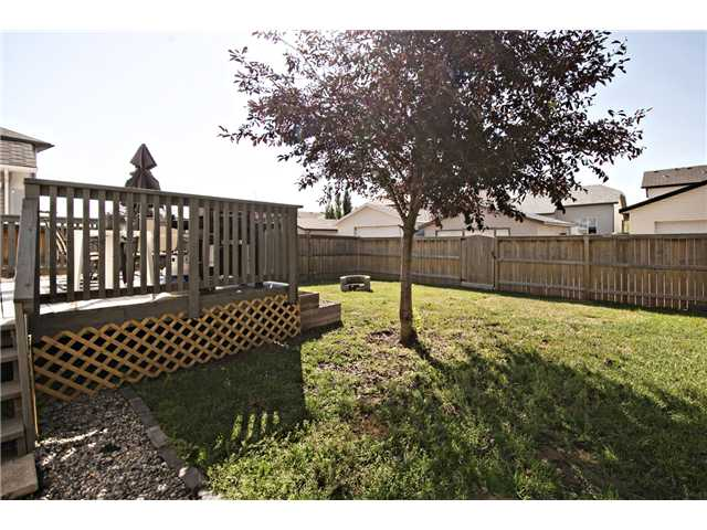 Photo 19: 440 STONEGATE Road NW: Airdrie Residential Detached Single Family for sale : MLS® # C3630680