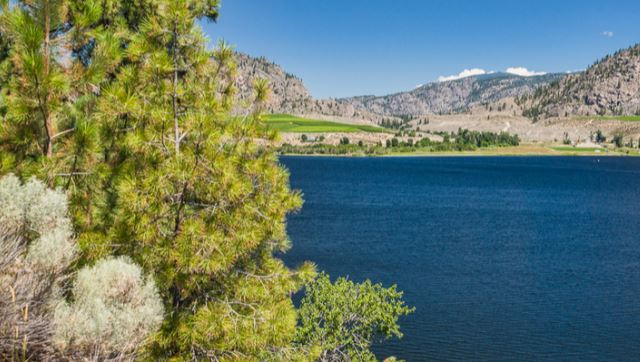 Main Photo: 15811 89th Street in Osoyoos: Out of Town Home for sale : MLS(r) # 159594