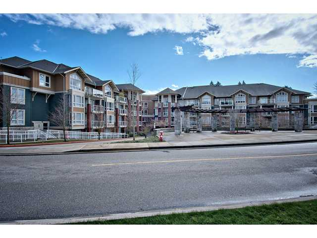 Main Photo: #101 14 E Royal Avenue in New Westminster: Fraserview NW Condo for sale : MLS® # V934214