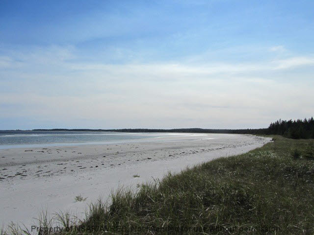 Photo 2: Photos: 198 SEASIDE Drive in Louis Head: 407-Shelburne County Residential for sale (South Shore)  : MLS® # 4686576