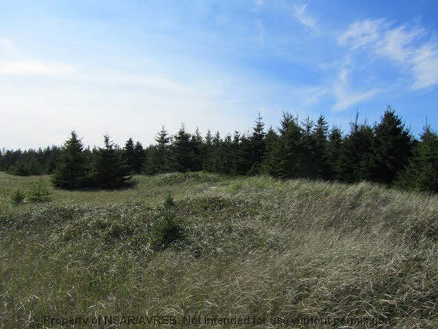 Photo 6: Photos: 198 SEASIDE Drive in Louis Head: 407-Shelburne County Residential for sale (South Shore)  : MLS® # 4686576