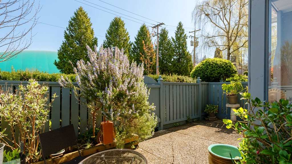 Photo 15: 3115 PINE STREET in Vancouver: Fairview VW Townhouse for sale (Vancouver West)  : MLS® # R2059351