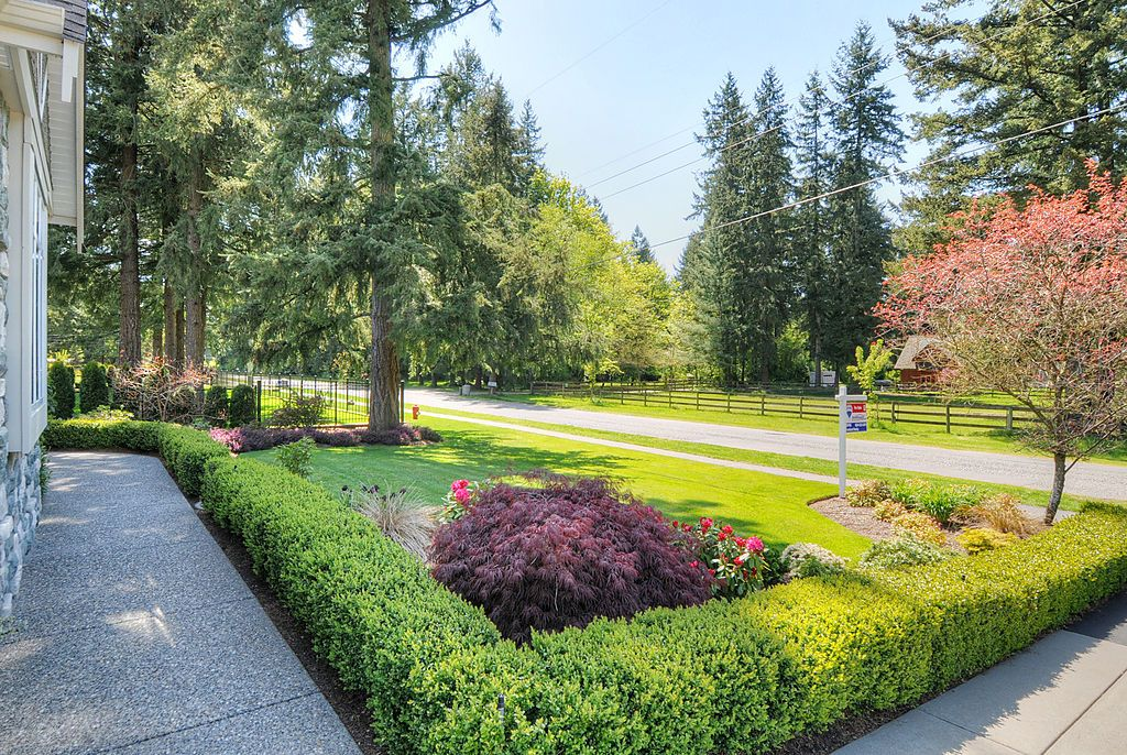 "Photo 21: 2650 204 Street in Langley: Brookswood Langley House for sale in ""South Langley/Fernridge"" : MLS® # F1209267"