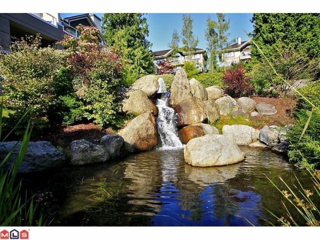 "Photo 9: 102 4001 OLD CLAYBURN Road in Abbotsford: Abbotsford East Townhouse for sale in ""CEDAR SPRINGS"" : MLS® # F1306251"