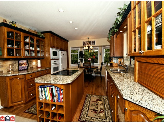 Photo 4: 13551 14A Avenue in Surrey: Crescent Bch Ocean Pk. House for sale (South Surrey White Rock)  : MLS® # F1214007