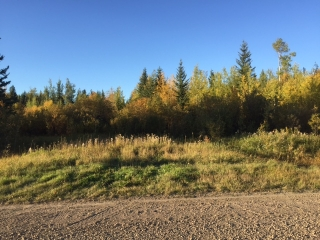 Main Photo: Nojack Road in : Whitecourt Rural Land/Vacant Lot for sale (Whitecourt Rural)  : MLS® # 43802