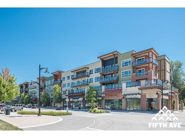 Main Photo: 313 20728 Willoughby Town Centre Drive in Langley: Condo for sale