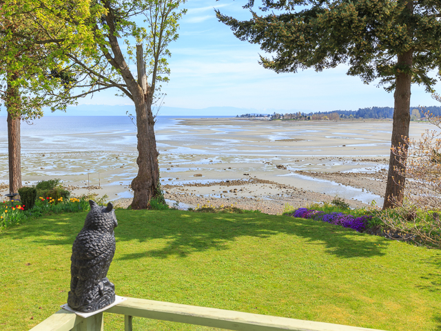 Main Photo: 316 Dogwood Street: Parksville House for sale (Nanaimo)  : MLS® # 407060