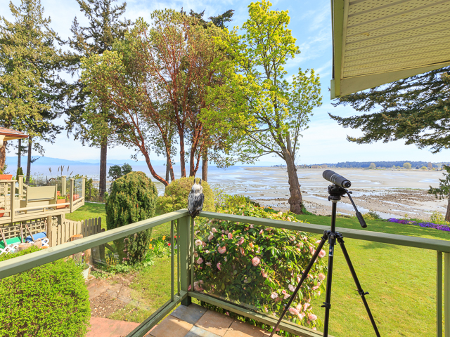 Photo 2: 316 Dogwood Street: Parksville House for sale (Nanaimo)  : MLS® # 407060