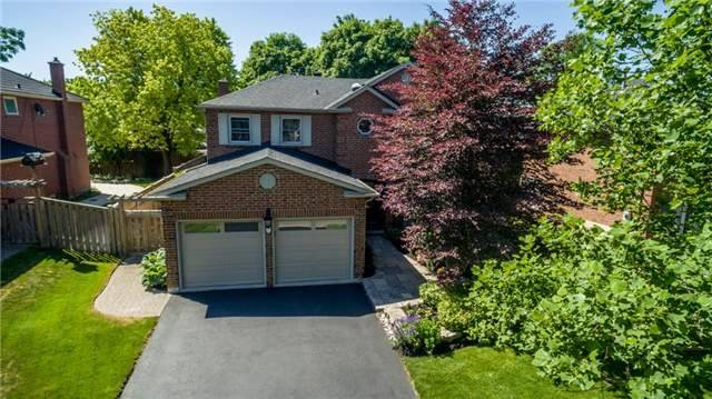 Main Photo: 7 Daniel Crt in Markham: Markham Village Freehold for sale : MLS®# N3578772