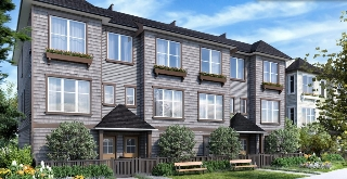 Main Photo: 22-8217 204 B St in Langley: Willoughby Heights Townhouse for sale : MLS® # Pre-Sale