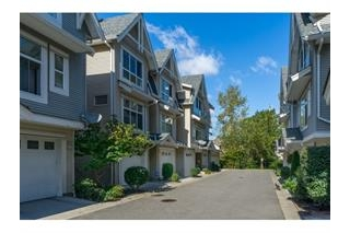 Main Photo: 36 6450 199 Street in Langley: Willoughby Heights Townhouse for sale : MLS® # R2001928