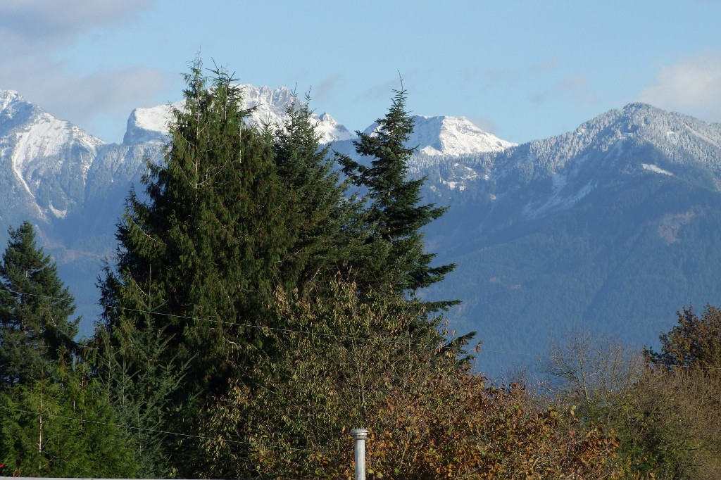 Photo 17: 8776 Ashwell Rd in Chilliwack: House for sale : MLS(r) # H1404428